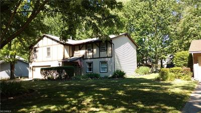 Mentor Single Family Home For Sale: 6813 Palmerston Dr