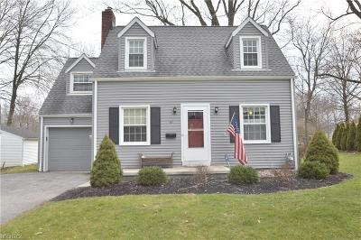 Canfield Single Family Home For Sale: 45 Maple St