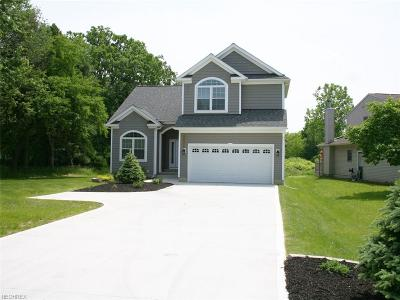 Willoughby Single Family Home For Sale: 38256 Lakeshore