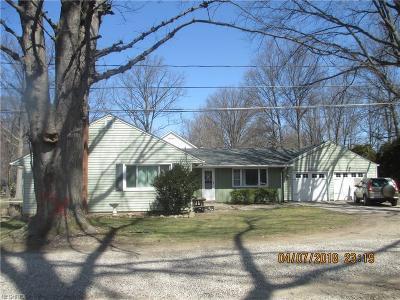 Avon Lake Single Family Home For Sale: 155 Tomahawk Dr
