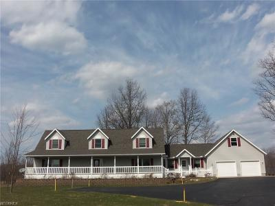 Geauga County Single Family Home For Sale: 17220 Amblaire Rd
