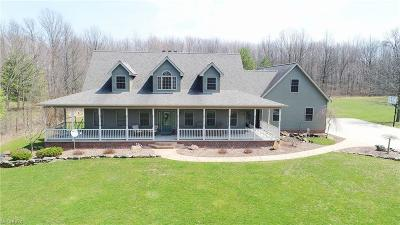 Austintown Single Family Home For Sale: 1187 South Turner Rd