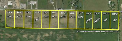 Litchfield Residential Lots & Land For Sale: Stone Rd