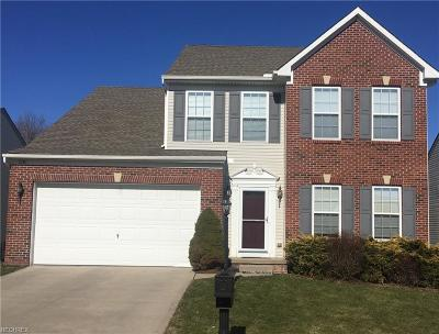 Aurora Single Family Home For Sale: 3281 Fenmore Ln