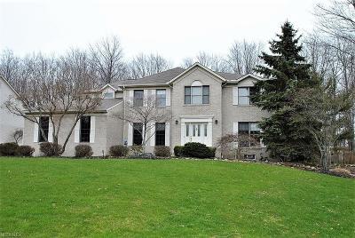 Solon Single Family Home For Sale: 7174 Longview Dr