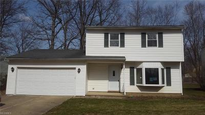 Painesville OH Single Family Home For Sale: $65,000