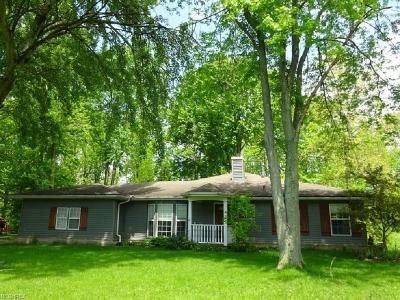 Broadview Heights Single Family Home For Sale: 2250 East Boston Rd