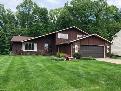 Strongsville Single Family Home For Sale: 13339 Compass Point Dr