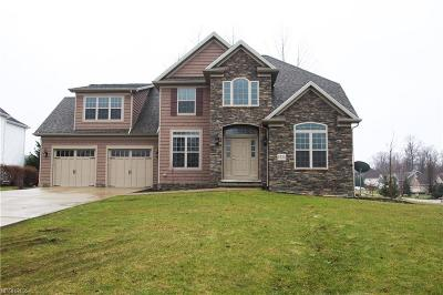 Lake County Single Family Home For Sale: 11520 Monarch Ct