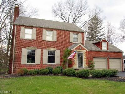 Youngstown Single Family Home For Sale: 245 Griswold Dr