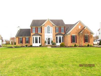 Olmsted Township Single Family Home For Sale: 27075 Sanctuary Ln