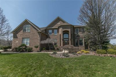 Strongsville Single Family Home For Sale: 18006 Stony Point Dr