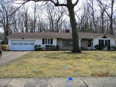 Avon Lake Single Family Home For Sale: 161 Curtis Dr