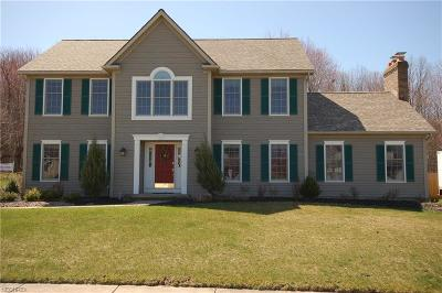 Cuyahoga County Single Family Home For Sale: 7731 Lime Ln