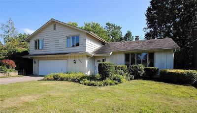Lyndhurst Single Family Home For Sale: 5552 Kilbourne Dr