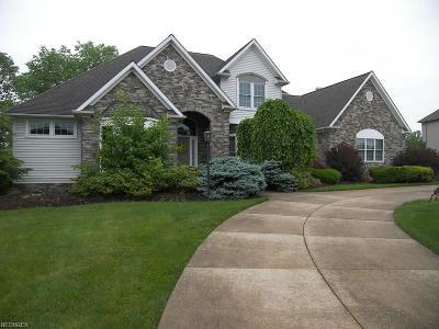Solon Single Family Home For Sale: 6502 Dorset Ln
