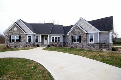 Copley Single Family Home For Sale: 4738 Paxton Rd