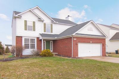 Olmsted Falls Single Family Home For Sale: 27244 Watkin Rd