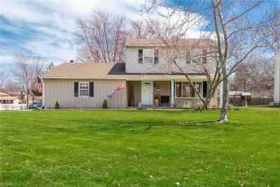 Lorain County Single Family Home For Sale: 6595 Rosedale Dr