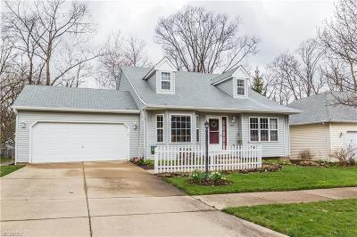 Cuyahoga County Single Family Home For Sale: 6038 Ravine Blvd