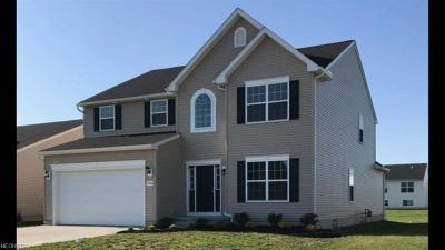 North Ridgeville Single Family Home For Sale: 37559 Amber Way