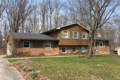 Aurora Single Family Home For Sale: 321 Chatham Dr