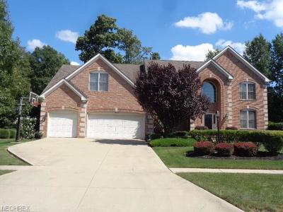 Strongsville Single Family Home For Sale: 11669 Fox Grove