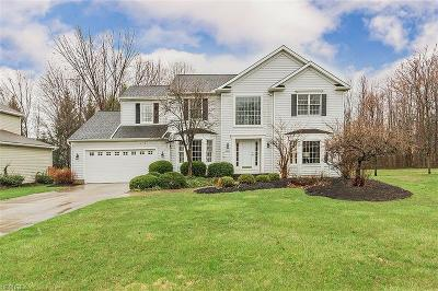 Cuyahoga County Single Family Home For Sale: 6562 Woodbury Dr