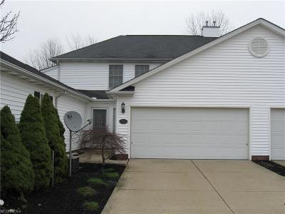 Painesville OH Condo/Townhouse For Sale: $152,000