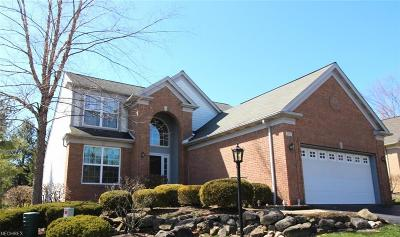 Geauga County Condo/Townhouse For Sale: 717 Sagewood Dr
