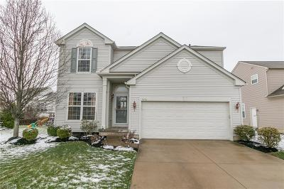 Olmsted Township Single Family Home For Sale: 9756 Nicole Ln