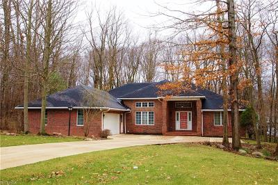 Medina Single Family Home For Sale: 3396 Old Hickory Ln