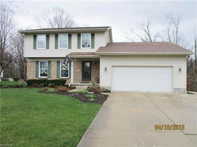 Canfield Single Family Home For Sale: 3675 Meander Reserve Cir