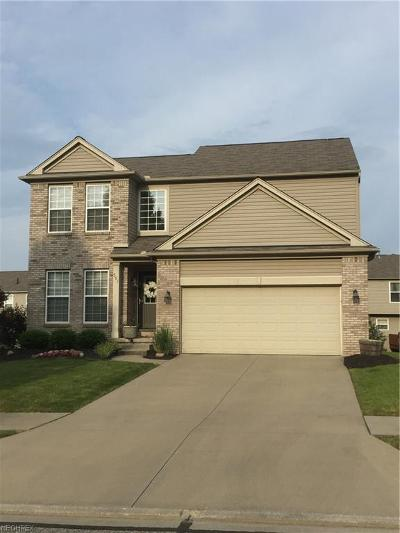 Broadview Heights Single Family Home For Sale: 591 Andover Cir