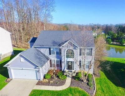 Summit County Single Family Home For Sale: 630 Chilham Cir