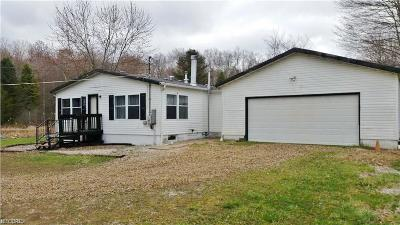 Garrettsville Single Family Home For Sale: 8164 Gotham Rd
