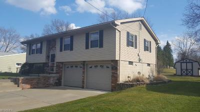 Boardman Single Family Home For Sale: 367 Annawan Ln