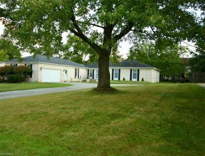 Seven Hills Single Family Home For Sale: 570 Simich