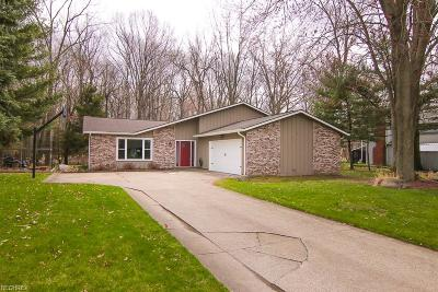 Avon Lake Single Family Home For Sale: 32581 Greenwood Dr