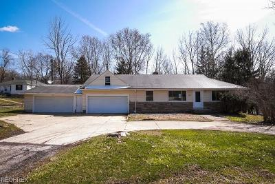 Broadview Heights Single Family Home For Sale: 8617 Broadview Rd