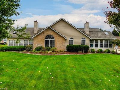 Canfield Multi Family Home For Sale: 582-584 Shadydale
