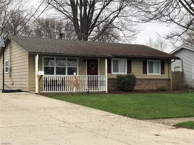 Elyria Single Family Home For Sale: 701 Denison Ave