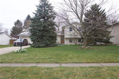 Brunswick Single Family Home For Sale: 332 Bruce Dr