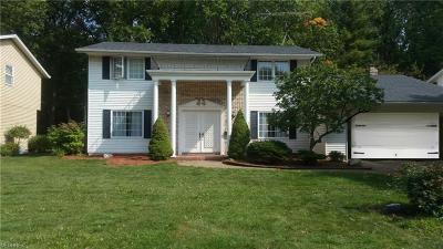 Lorain Single Family Home For Sale: 4337 Washington Ave