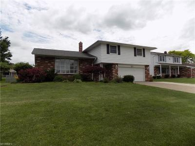 Cuyahoga County Single Family Home For Sale: 4272 Rollingview Dr