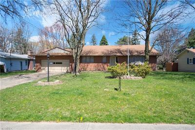Youngstown Single Family Home For Sale: 6080 Glenridge Rd