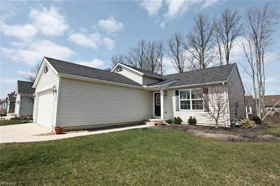 North Ridgeville Single Family Home For Sale: 37300 Freedom Ave