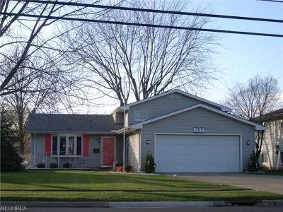 Elyria Single Family Home For Sale: 762 Abbe Rd North