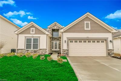 Strongsville OH Single Family Home For Sale: $450,000