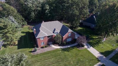 Avon Lake Single Family Home For Sale: 319 Cheyenne Falls